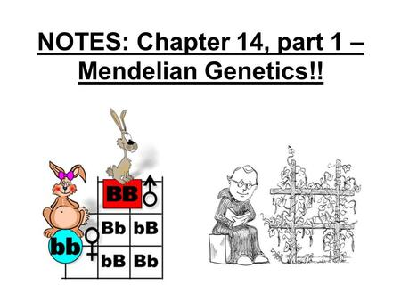 NOTES: Chapter 14, part 1 – Mendelian Genetics!!.