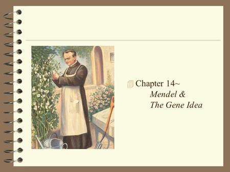 4 Chapter 14~ Mendel & The Gene Idea The Origins of Genetics 4 Heredity: the passing of traits from parents to offspring 4 Gregor Mendel did experiments.