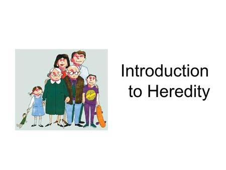 Introduction to Heredity. What is Heredity? Heredity is the passing of traits from parents to offspring Genetics is the study of heredity.