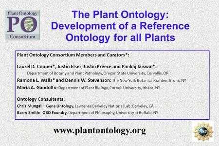 The Plant Ontology: Development of a Reference Ontology for all Plants www.plantontology.org Plant Ontology Consortium Members and Curators*: Laurel D.