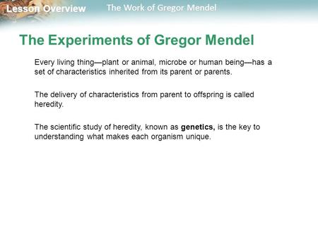 Lesson Overview Lesson Overview The Work of Gregor Mendel The Experiments of Gregor Mendel Every living thing—plant or animal, microbe or human being—has.