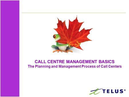 CALL CENTRE MANAGEMENT BASICS The Planning and Management Process of Call Centers.