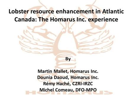 Lobster resource enhancement in Atlantic Canada: The Homarus Inc. experience By Martin Mallet, Homarus Inc. Dounia Daoud, Homarus Inc. Rémy Haché, CZRI-IRZC.