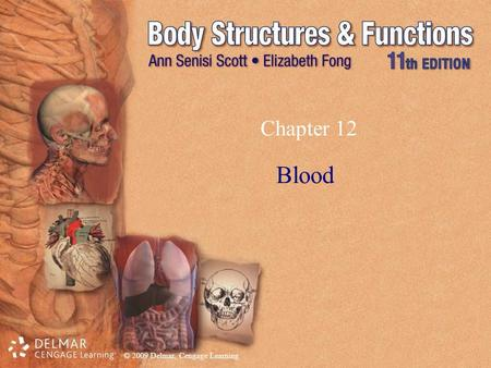 © 2009 Delmar, Cengage Learning Chapter 12 Blood.