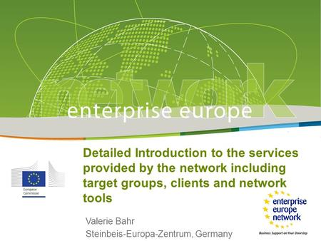 Detailed Introduction to the services provided by the network including target groups, clients and network tools Valerie Bahr Steinbeis-Europa-Zentrum,