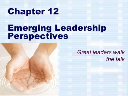 Chapter 12 Emerging Leadership Perspectives