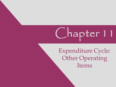 Chapter 11 Expenditure Cycle: Other Operating Items.