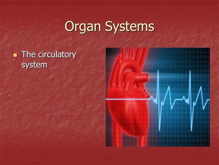 Organ Systems The circulatory system The circulatory system.