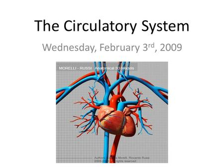 The Circulatory System Wednesday, February 3 rd, 2009.