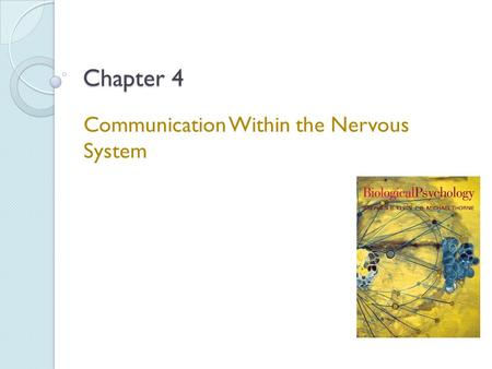 Communication Within the Nervous System