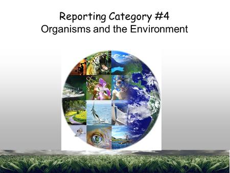 1 Reporting Category #4 Organisms and the Environment.