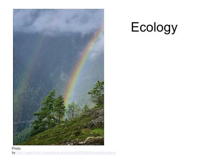 Ecology Photo by