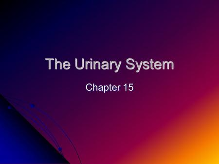 The Urinary System Chapter 15.