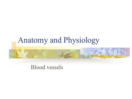 Anatomy and Physiology Blood vessels. Blood vessel overview Blood travels from the heart through arteries. Initially these are large and very elastic.