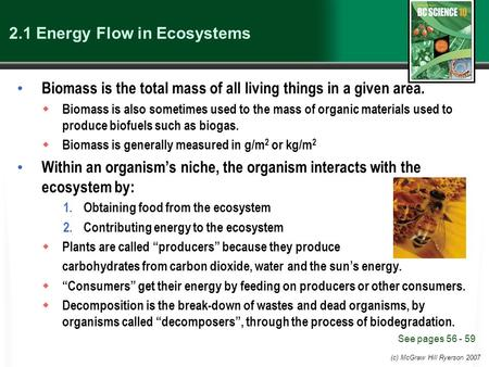 (c) McGraw Hill Ryerson 2007 2.1 Energy Flow in Ecosystems Biomass is the total mass of all living things in a given area.  Biomass is also sometimes.