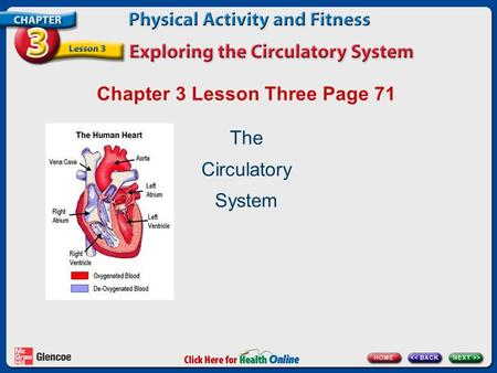 Chapter 3 Lesson Three Page 71 The Circulatory System.