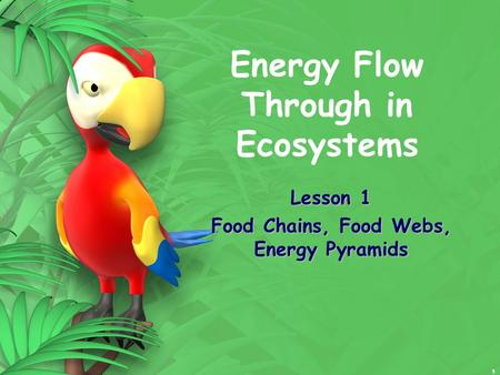 1 Energy Flow Through in Ecosystems Lesson 1 Food Chains, Food Webs, Energy Pyramids.