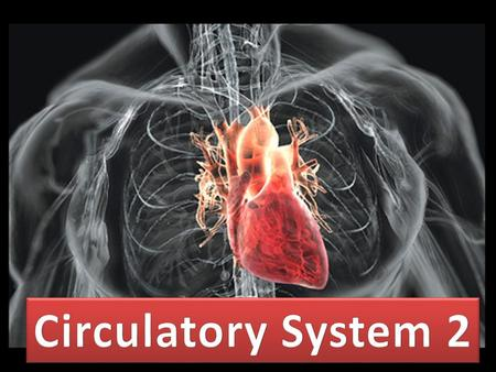 carry blood away from heart usually O 2 rich Pulmonary artery – artery leading from heart to lung (deoxygenated) connective tissue and muscle walls elastic.