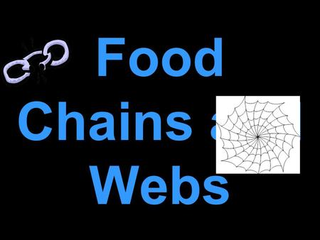 Food Chains and Webs What is a Food Chain? A food chain is the path by which energy passes from one living thing to another.