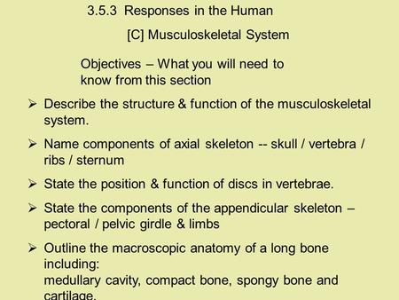 Objectives – What you will need to know from this section  Describe the structure & function of the musculoskeletal system.  Name components of axial.