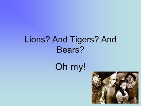 Lions? And Tigers? And Bears? Oh my!. In The Wizard of Oz, Dorothy, Tinman and Scarecrow were frightened of what may be out there as they traveled the.