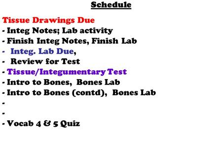 Schedule Tissue Drawings Due - Integ Notes; Lab activity - Finish Integ Notes, Finish Lab -Integ. Lab Due, -Review for Test - Tissue/Integumentary Test.