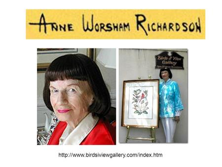 Anne Worsham Richardson opened Birds I View Gallery in downtown Charleston more than three decades ago. Since.