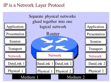 IP is a Network Layer Protocol Physical 1 Network DataLink 1 Transport Application Session Presentation Network Physical 1 DataLink 1 Physical 2 DataLink.