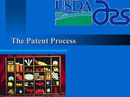 The Patent Process. Protection of Ideas or Inventions An idea/know how Generally speaking, we would like to protect inventions that have significant commercial.
