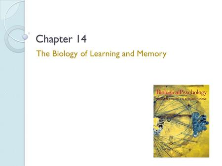 The Biology of Learning and Memory