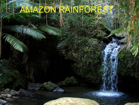 AMAZON RAINFOREST. Start to finish Amazon river facts Starts in the Peruvian Andes 4080 miles in length Most water comes from snow Averges 9 feet of.