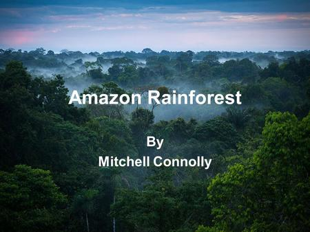 Amazon Rainforest By Mitchell Connolly. Amazon rainforest The Amazon rainforest is in south America. It covers 5,500,000 kilometers out of 7,000,000 kilometers.