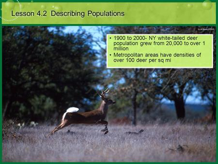 Lesson 4.2 Describing Populations