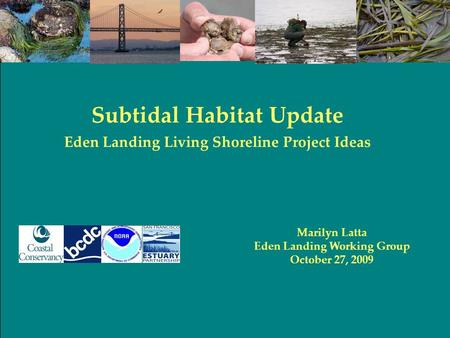 Marilyn Latta Eden Landing Working Group October 27, 2009 Subtidal Habitat Update Eden Landing Living Shoreline Project Ideas.