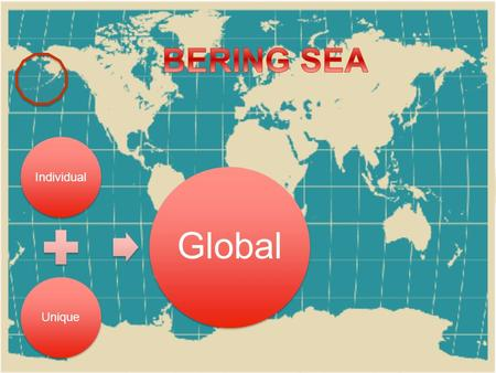 IndividualUnique Global What makes the Bering Sea important to the entire planet? Migratory Birds & Mammals Fish Open Ocean / Sea Ice Chemical processes.