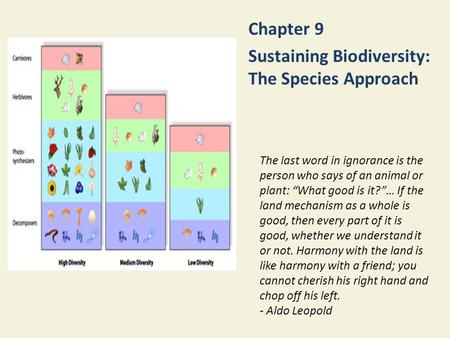 "Chapter 9 Sustaining Biodiversity: The Species Approach The last word in ignorance is the person who says of an animal or plant: ""What good is it?""… If."