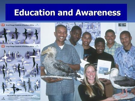 Education and Awareness Education and Awareness. Awareness materials should contain: Are seabirds really of conservation concern or is this an animal.