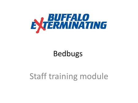 "Bedbugs Staff training module. What is a Bedbug? A true vampire: Feed at night Feed only on blood Need to be ""invited in"" A female bedbug Note the round."