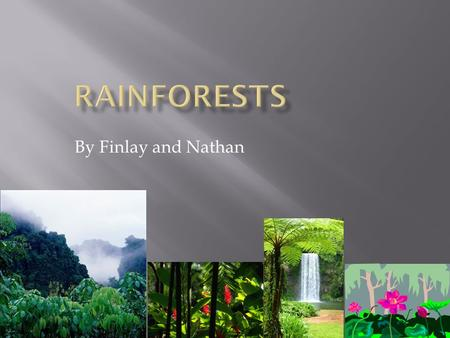 By Finlay and Nathan. Biggest Rainforest Second biggest Rainforest Third biggest Rainforest The Amazon rainforest. The Daintree Rainforest The Congo Rainforest.