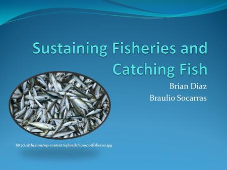 Sustaining Fisheries and Catching Fish