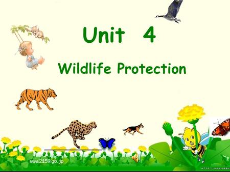 Unit 4 Wildlife Protection Defination of wildlife animals or plants which live or grow in natural conditions Look at some pictures.