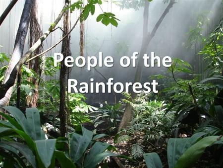 People of the Rainforest. Indigenous People Hunting and Gathering Live off nature Amazon Rainforest holds the largest populations of these tribal people.