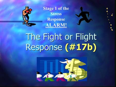 The Fight or Flight Response (#17b) Stage 1 of the Stress Response ALARM!