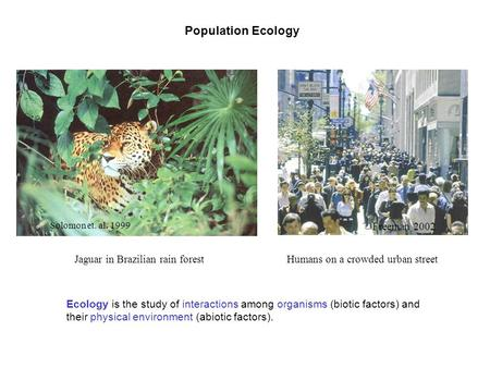 an introduction to the ecology of a rain forest Fundamentals of rainforest ecology we need to have an understanding of their ecological properties for an introduction to rainforest ecology.