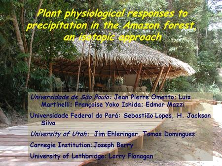 Plant physiological responses to precipitation in the Amazon forest, an isotopic approach Universidade de São Paulo: Jean Pierre Ometto; Luiz Martinelli;
