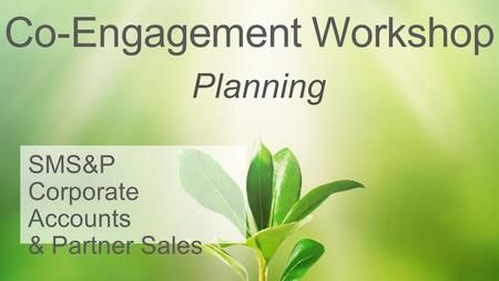 Co-Engagement Workshop SMS&P Corporate Accounts & Partner Sales Planning.