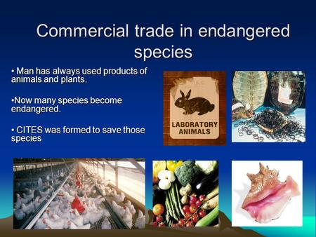 Commercial trade in endangered species Man has always used products of animals and plants. Man has always used products of animals and plants. Now many.