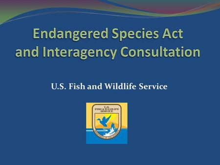 U.S. Fish <strong>and</strong> <strong>Wildlife</strong> Service. 1) Background 2) Sections 1 – 18 3) Section 7 - Section 7(a)(1) - Section 7(a)(2) Informal Consultation Initiating Formal.