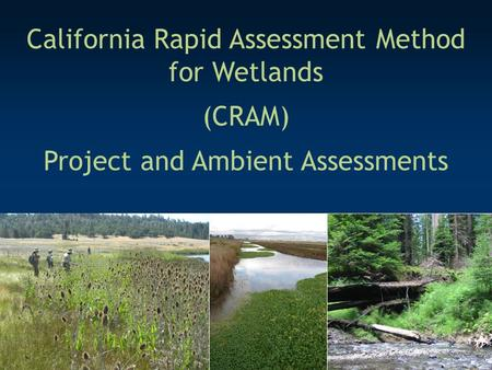 California Rapid Assessment Method for Wetlands (CRAM) Project and Ambient Assessments.
