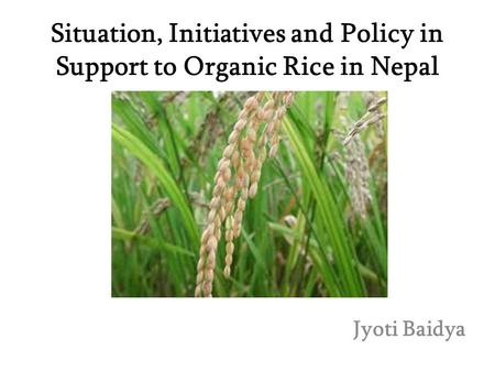 Situation, Initiatives and Policy in Support to Organic Rice in Nepal Jyoti Baidya.